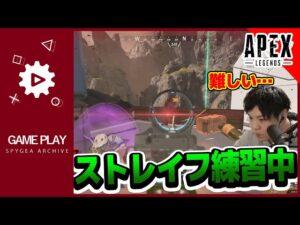 【Apex】ストレイフは難しい…【SPYGEA・スパイギア】