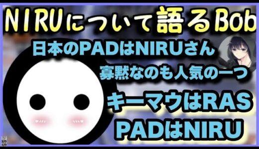【解説】NIRUさんの凄さについて語るBobSappAimさん【Apex】
