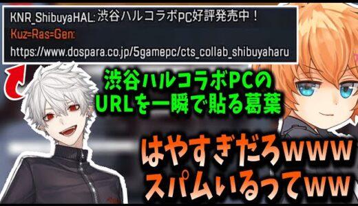 【V最協】一瞬でコラボPCのURLを貼る葛葉に爆笑する渋谷ハル【Apex】