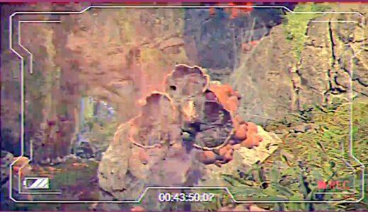 【速報】新マップと思われる一部映像が公開!!自然がテーマか?【APEX】